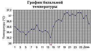 Температурный график менструального цикла