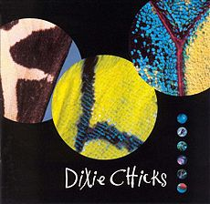 Обложка альбома Dixie Chicks «Fly» (2000)