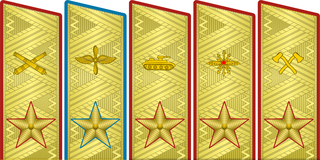 Rank insignia of маршал рода войск.PNG