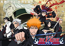 Bleach: Memories of Nobody