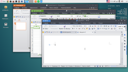 WPS office - Debian 8 Custom.png