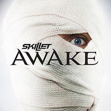 Skillet Awake скачать торрент альбом - фото 2