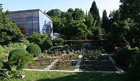 Ботанический сад Ужгородского университета, вид с улицы И. Ольбрахта