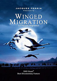 Winged Migration.jpg