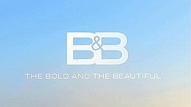 The Bold and the Beautiful.jpg