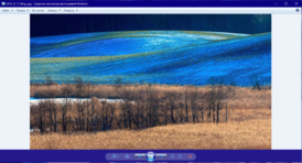 Windows Photo Viewer in Windows 10.png