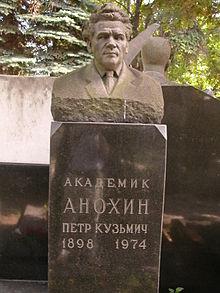 Книга анохин петр кузьмич краткая биография