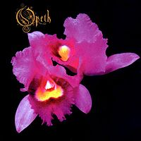 Обложка альбома Opeth «Orchid» (1995)
