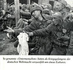 Солдаты попавшие в плен 1941 по 1942