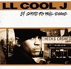 Обложка альбома LL Cool J «14 Shots to the Dome» (1993)