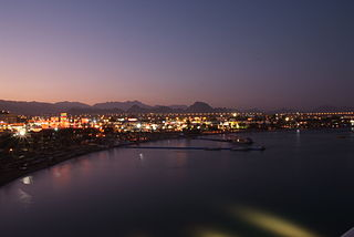 Night Sharm.jpg