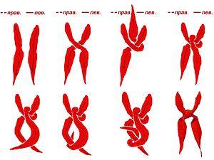 схема завязывания пионерского галстука
