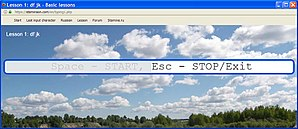 программа стамина онлайн
