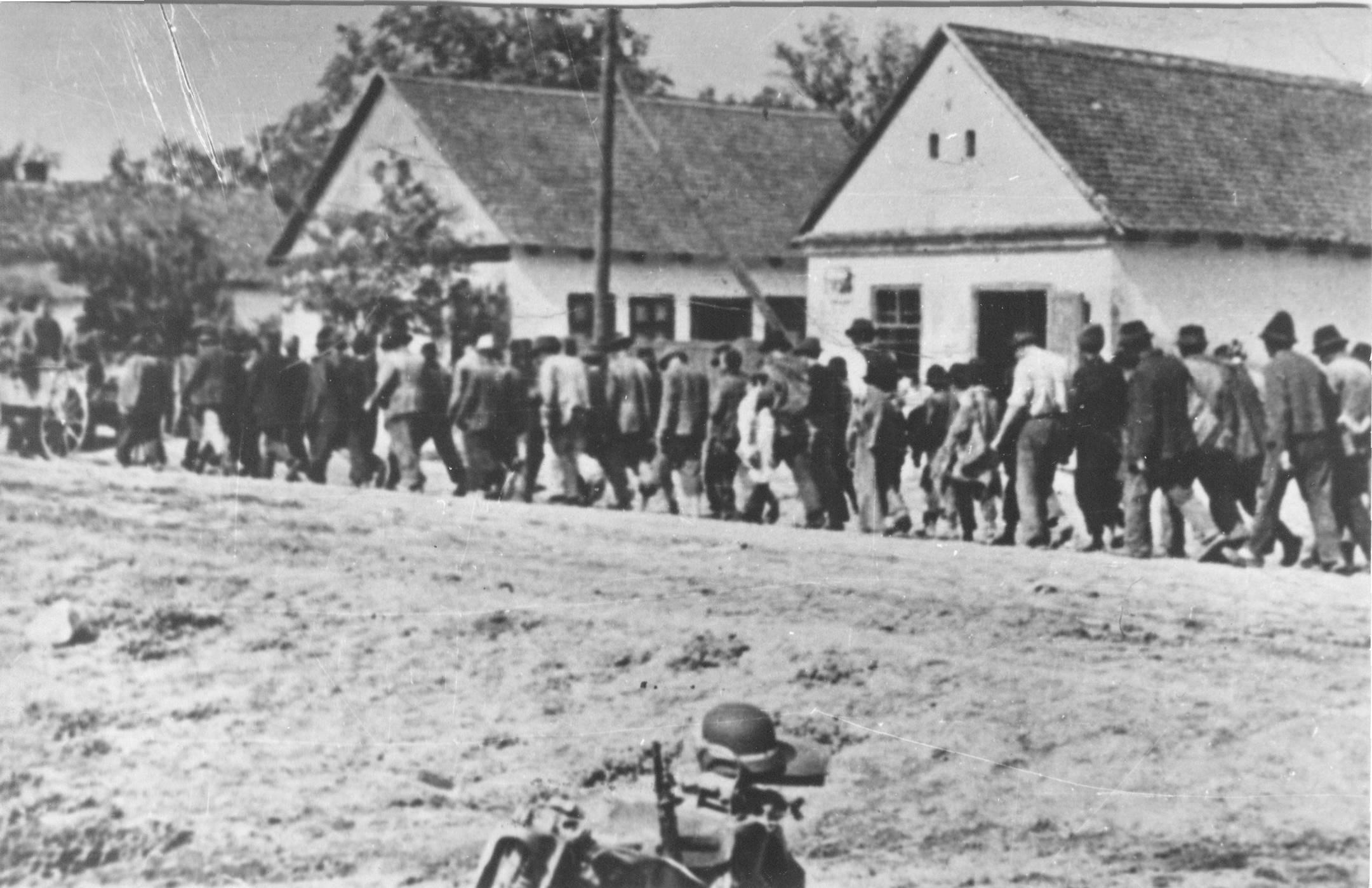 Image result for partizani u vojvodini