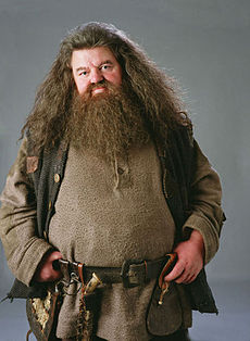 rubeus hagrid wikipedia. Black Bedroom Furniture Sets. Home Design Ideas