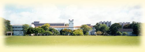 University of Colombo small.jpg