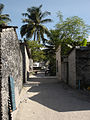 Streets of alifushi maldives.jpg