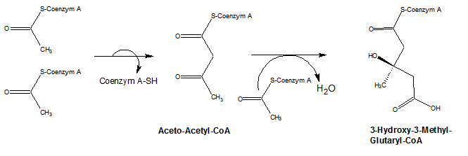 Aceto acetyl.png