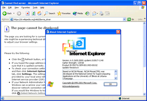 Internet Explorer 6.png