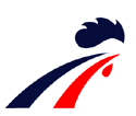 France men's national ice hockey team Logo.png