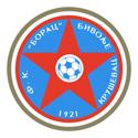 Fudbalski klub Borac Bivolje