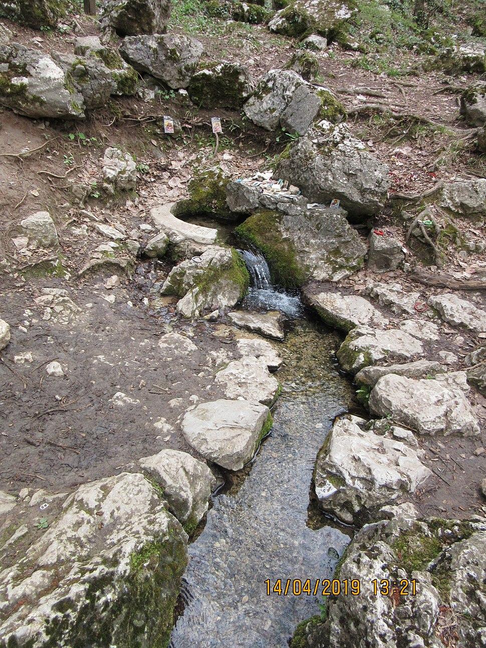 Сокобања извор водомара