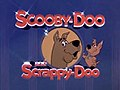 Scooby and scrappy doo.jpg