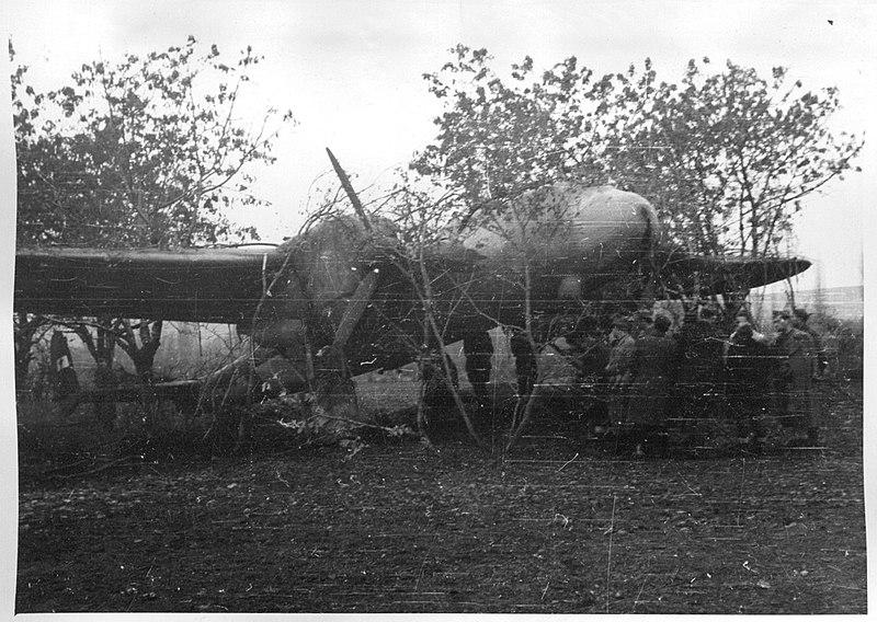 Delegati II. zasedanja AVNOJ-a razgledavaju maskirani avion Dornier Do 17E (ex. 0313), koji je 8. studenog 1943. prebjegao iz zrakoplovstva NDH partizanima u Livno