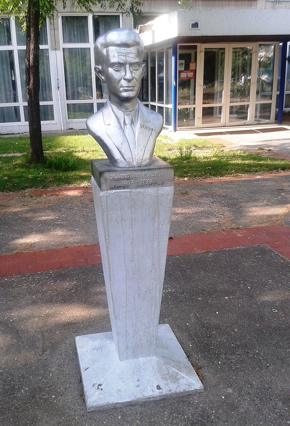 Bista Zarka Zrenjanina, Novi Beograd