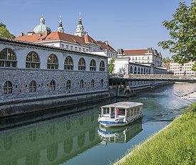 Ljubljanica i Katedrala.jpg
