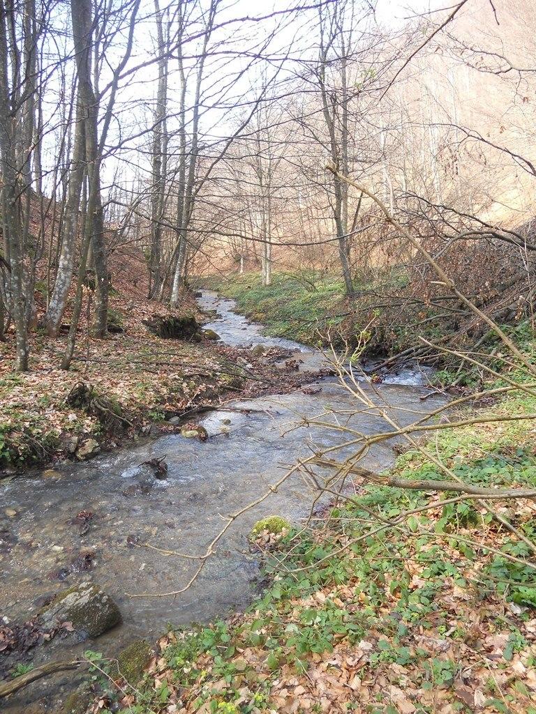 Reka Zavojsnica (9)