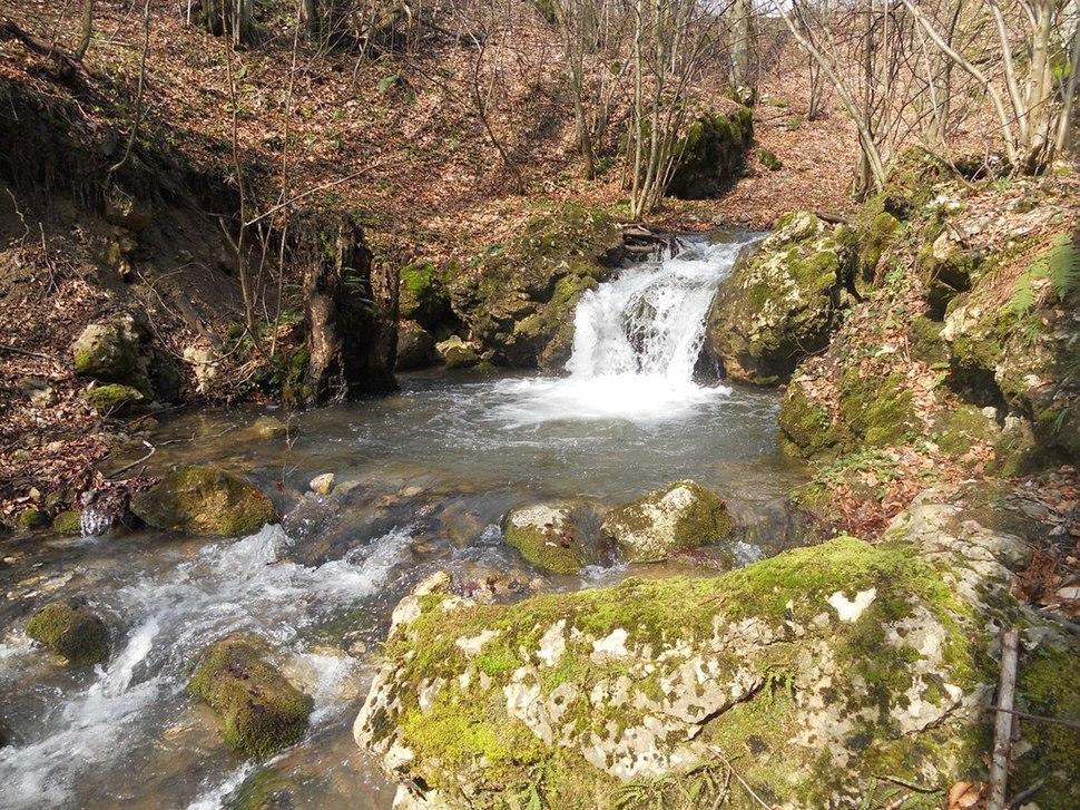 Reka Zavojsnica (1)