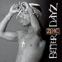 Better Dayz Cover