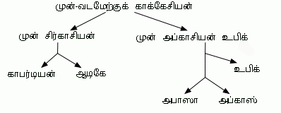 Northwest Caucasian languages Tamil.png