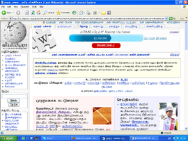 Internet Explorer 6 on Windows XP.PNG