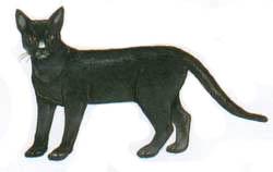 การเวก (พันธุ์แมว) - วิกิพีเดีย