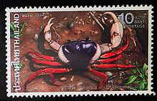 Queen sirikit crab in thai stamp.jpg