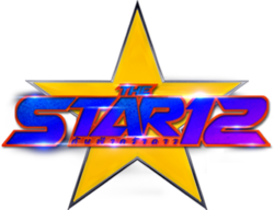 THE STAR 12.png