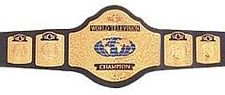 The WCW World Television Championship belt