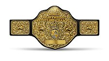 The WCW World Heavyweight Championship belt design (1991, 1994 – 2001)