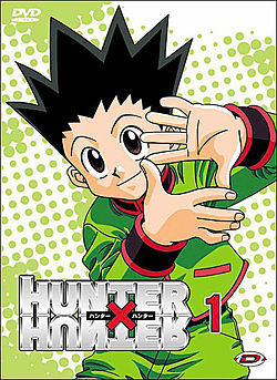 Hunter x hunter DVD.jpg