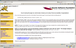 Apache Tomcat Screenshot.png