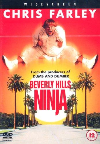 Beverly Hills Ninja Chris Rock Hotel Room