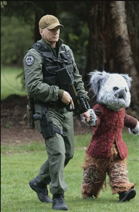 when does sg 1 meet the furlings