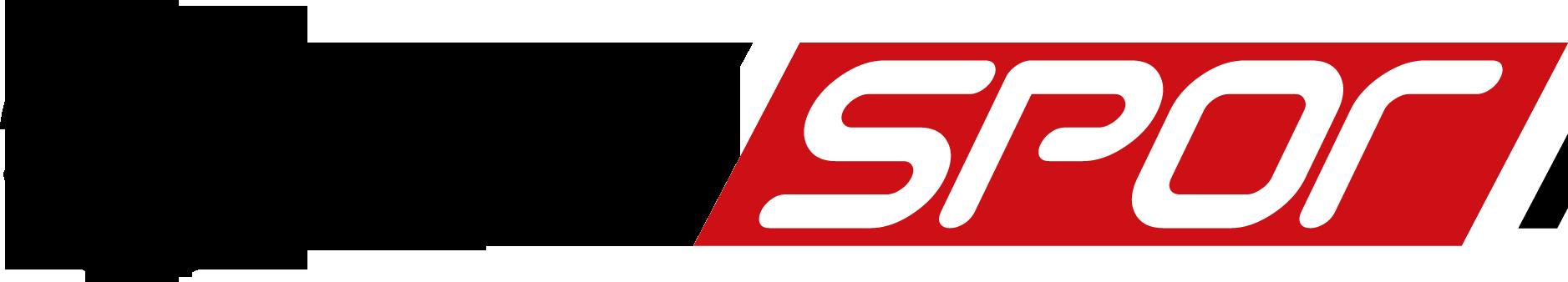 20130504105019%21NTV_Spor_logosu.png