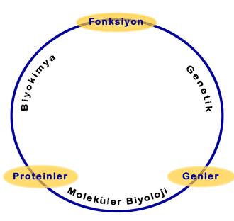 biyokimya tarihçesi