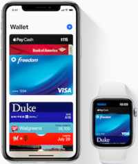 Apple Pay promotional hero.png