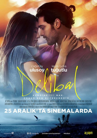 Picture of a movie: Delibal
