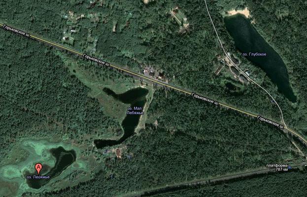 Лебяжье (озеро, Татарстан)