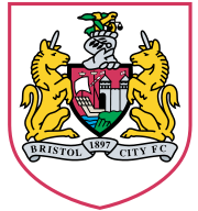 Bristol-city.png